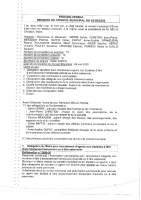 4 – PV REUNION 03-06-2020