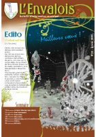 Enval-BM 18 de 2010-01
