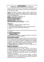 REUNION CM 11-04-2011