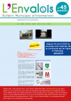 Enval-BM 45 de 2021-06